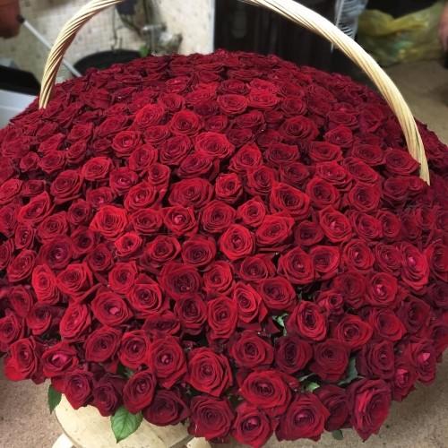 Купить на заказ 1001 роза с доставкой в Хромтау