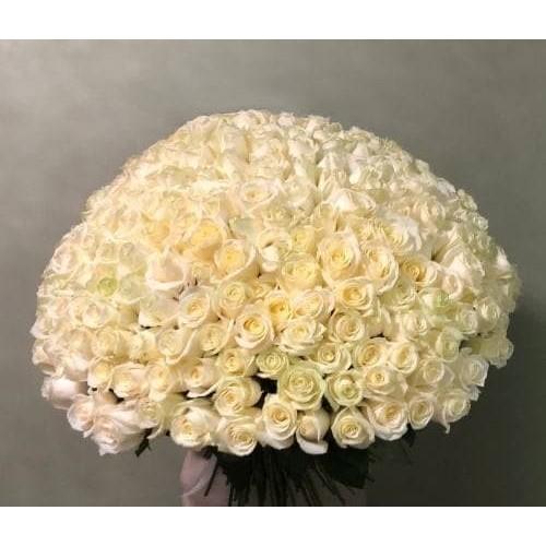 Купить на заказ 201 роза с доставкой в Хромтау