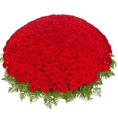 Купить на заказ 301  роза с доставкой в Хромтау